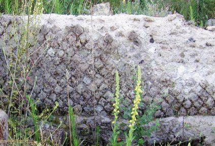 roman wall opus reticulatum